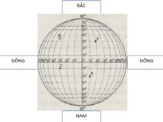 Bài 4. Phương hướng trên bản đồ. Kinh độ, vĩ độ và tọa độ Địa lý – SBT Địa lớp 6: Hãy cho biết đầu phía bên tay phải của kinh tuyến chỉ hướng gì?