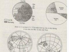 Bài 7. Sự vận động tự quay quanh trục của Trái Đất và các hệ quả – SBT Địa lớp 6: Người ta gọi nửa cầu nào là nửa cầu lục địa và nửa cầu nào là nửa cầu đại dương?