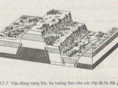 Bài 12. Tác động của nội lực và ngoại lực trong việc hình thành địa hình bề mặt Trái Đất – SBT Địa lớp 6: Các hiện tượng : uốn nếp, đứt gãy, núi lửa, động đất do nội lực hay ngoại lực?