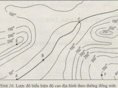 Bài 16. Thực hành: Đọc bản đồ (hoặc lược đồ) địa hình tỉ lệ lớn – SBT Địa lớp 6: Đường A – D có phải là đường đồng mức khôngVì sao ?