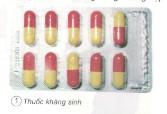 Bài 11. Dùng thuốc an toàn – Khoa học 5: Để cung cấp vi-ta-min cho cơ thể, bạn chọn cách nào dưới đây ? Hãy sắp xếp theo thứ tự ưu tiên