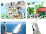 Bài 63. Tài nguyên thiên nhiên – Khoa học 5: Sử dụng năng lượng gió để chạy côi xay
