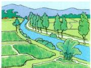 Bài 66. Tác động của môi trường đến môi trường đất – khoa học 5: Nguyên nhân nào dẫn đến sự thay đổi nhu cầu sử dụng đó
