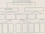 Bài 28. Vấn đề tổ chức lãnh thổ công nghiệp SBT Địa lớp 12: Kể tên 5 trung tâm công nghiệp lớn của cả nước và cơ cấu ngành của mỗi trung tâm ?