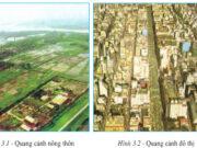 Bài 3. Quần cư. Đô thị hóa – Địa lí 7: Nêu những sự khác nhau cơ bản giữa quần cư đô thị và quần cư nông thôn
