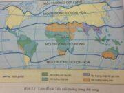Bài 6. Môi trường nhiệt đới – Địa lí 7: Cho biết đặc điểm của khí hậu nhiệt đới.