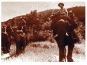 Bài 22. Đường Trường Sơn – Lịch sử 5: Ta mở đường Trường Sơn nhằm mục đích gì ?