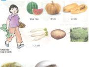 Bài 7. Tại sao cần phối hợp nhiều loại thức ăn – Khoa học 4: Nhóm thức ăn nào cần ăn đủ, ăn vừa phải hoặc ăn có mức độ?